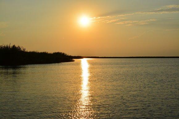 Kayaking Delta Safari Danube River