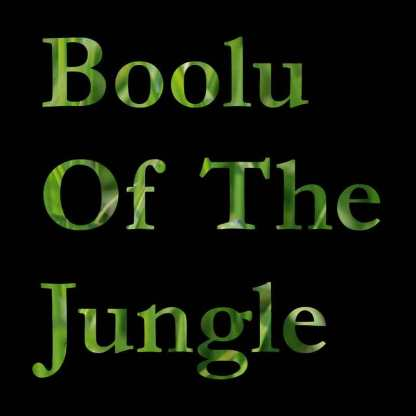 boolu of the jungle cover