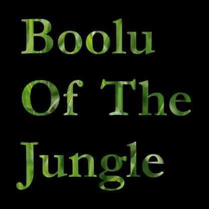 boolu of the jungle cover