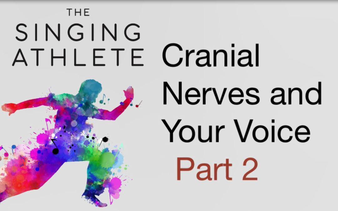 Cranial Nerves, Part 2
