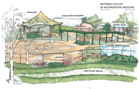 ncnm-sketch-garden-lg1