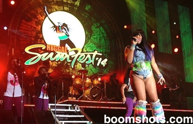 Reggae Sumfest 2014: Party Tun Up