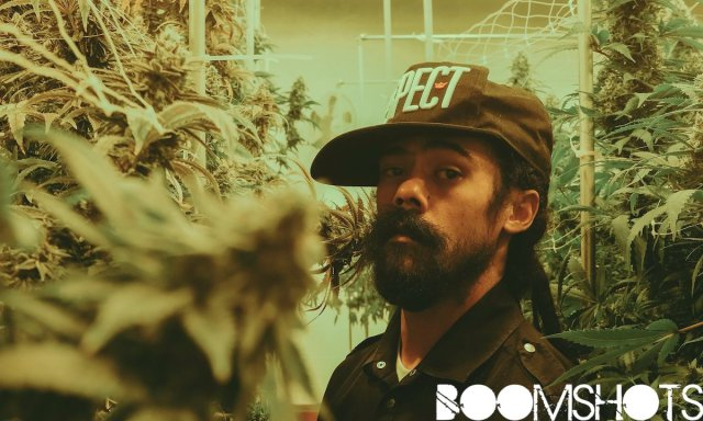 "Damian Marley's ""Joint Venture"" in the Ganja Business: ""You're not a Criminal for Smoking Herb"""