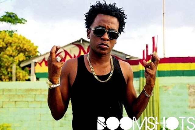 """Real Dancehall Crossover Hit of the Year: Charly Black """"Party Animal"""""""