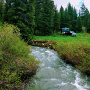 moose-creek-campground-wyoming-1