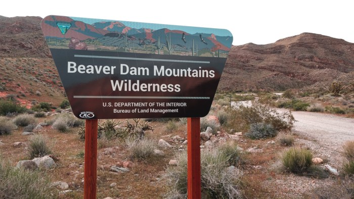 blm wilderness area camping