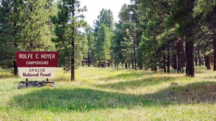 apache-sitgreaves national forest evacuation order