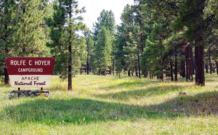 The Entire Apache-Sitgreaves National Forest is Closing!