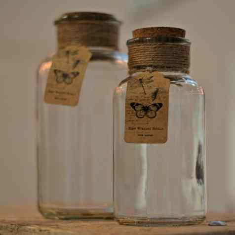 B&Q SS15 Botanical - Glass Pots