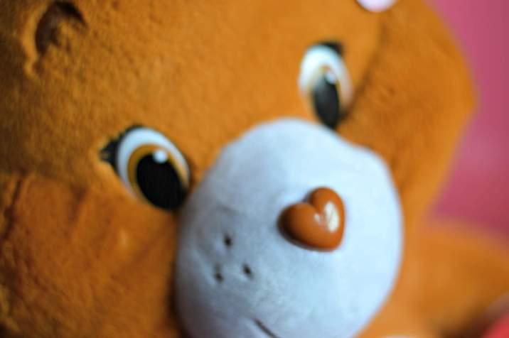 Tenderheart Care Bear - Face