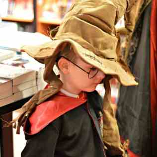 Waterstones Harry Potter Night - Tigger Sorting Hat