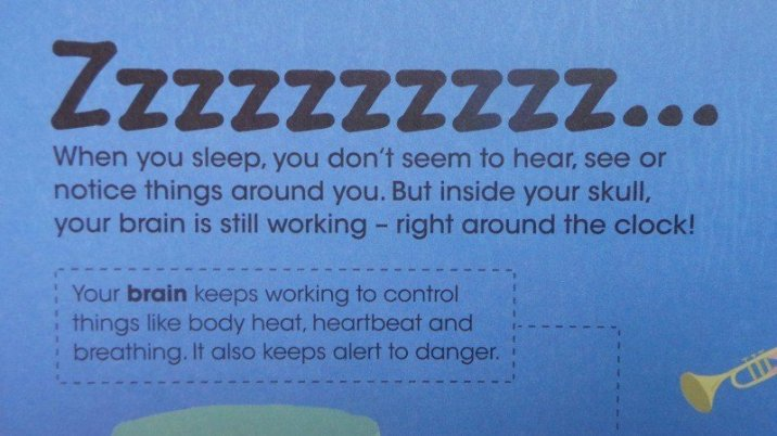 The Amazing Human Body - Sleep