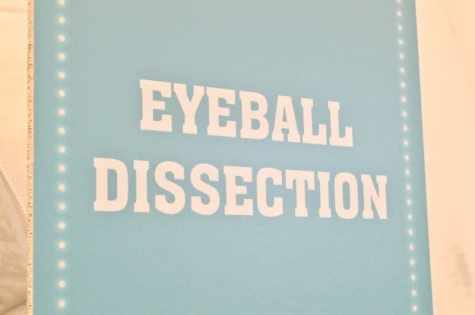 butlins-science-weekend-eyeball-dissection-poster