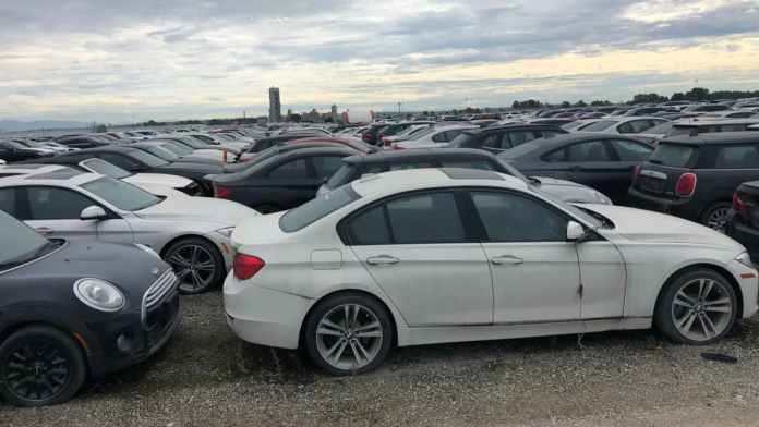 På en mark i Canada rådner 3.000 BMW-og Mini-modeller væk efter en snestorm i 2015 totalskadede dem.
