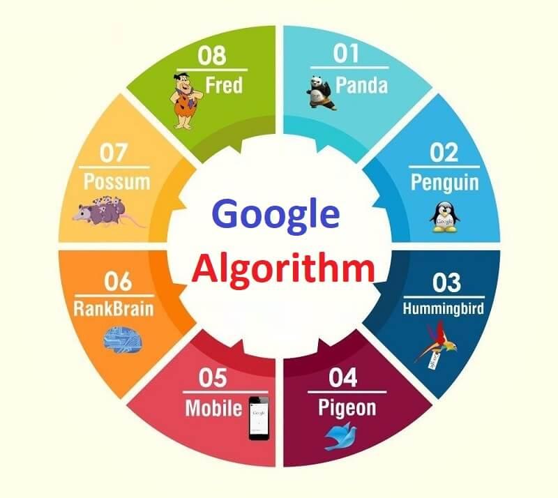 Major 8 Google Algorithm