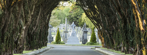 cemetery sunday glasnevin