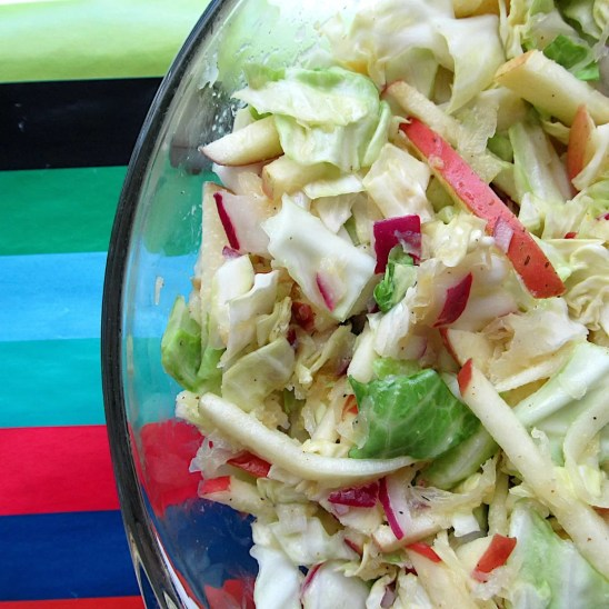 Sauerkraut Coleslaw with Red Onion and Apple