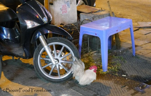hanoi chicken