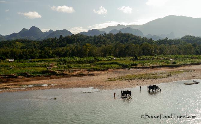 manadalo elephant sanctuary