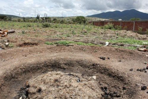 Pit of cooking agave/Photo: David Hammond
