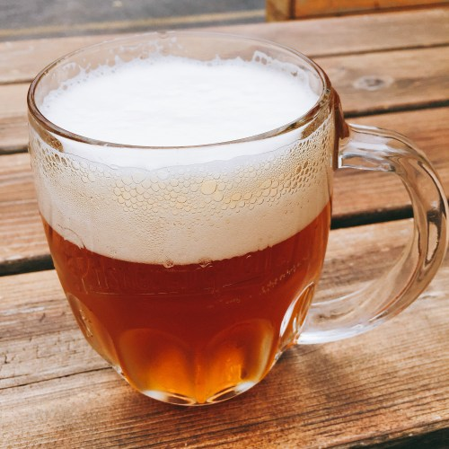 Fresh Pilsner Urquell, unfiltered, unpasteurized/Photo: David Hammond