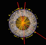 Higgs in quattro muoni: l'event display