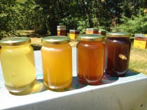 miels fermiers et biologiques