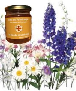 miel bio toutes fleurs de printemps