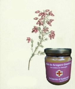 miel bio de bruyère cendrée
