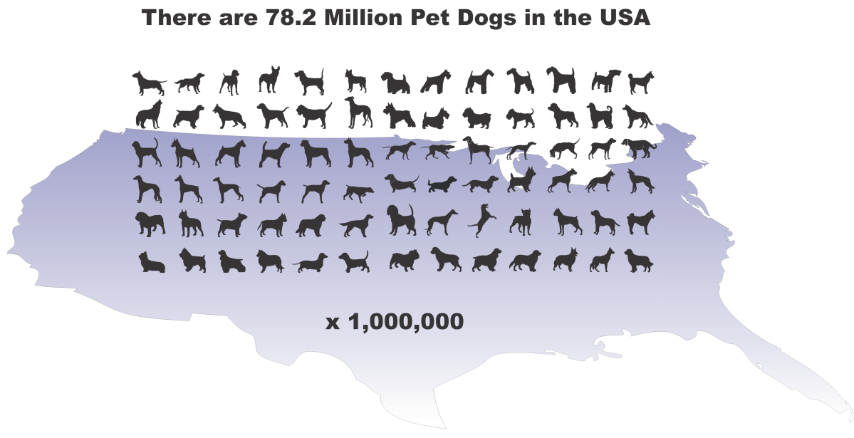 Only 2% of Dogs Die in Shelters Yearly