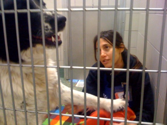 Leslie Smith in a claustrophobic prison photo that's out of focus with bad lighting. Who wouldn't want to take that dog home?