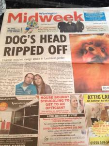 staffordshire_pitbull_terrier_rips_poms_head_off