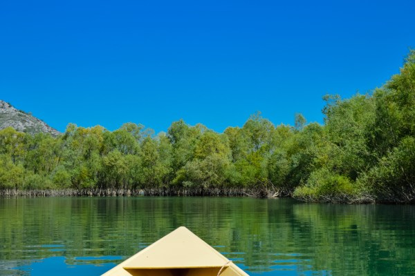 Boat Trip on Skadar Lake