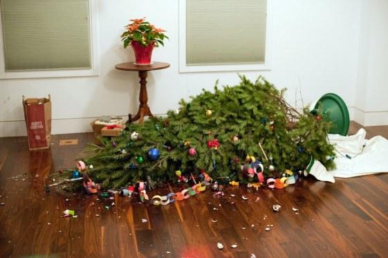 Fallen-christmas-tree.jpg