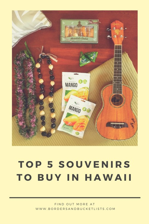 souvenirs to buy in hawaii pin