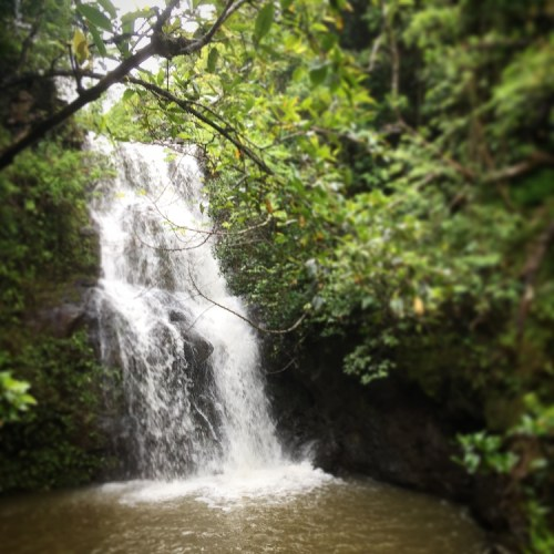Waterfall Hikes on Oahu Waimano Falls