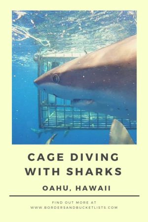 Cage Diving with Sharks on Oahu, Hawaii #hawaii #oahu #northshore #sharks #swimwithsharks #cagediving