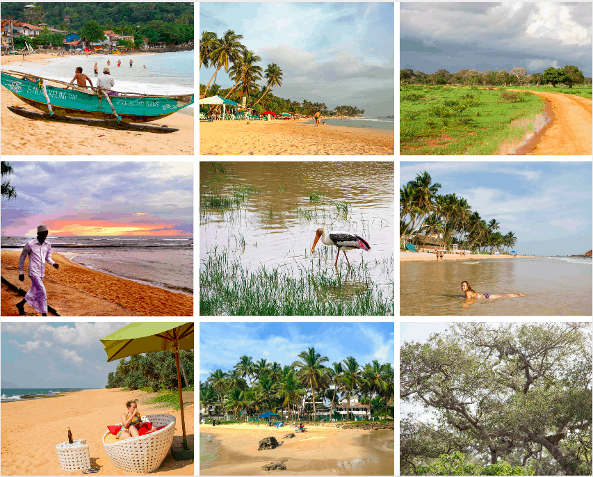 Beaches, National Parks, Sri Lanka