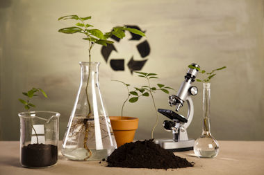 Boréaceutique - Phytochemical screening service