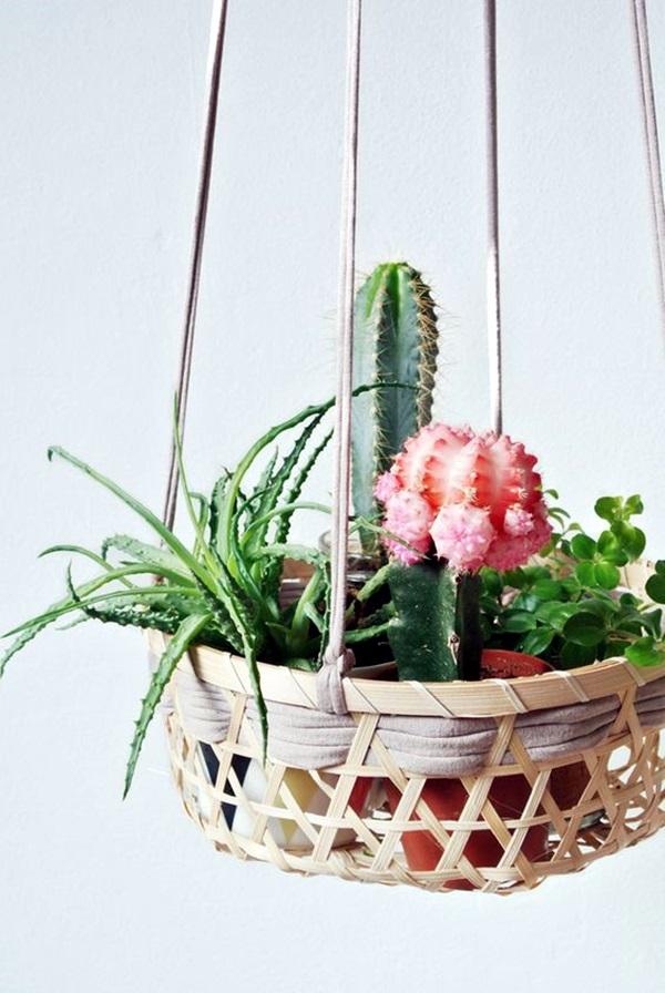 40 Elegant DIY Hanging Planter Ideas For Indoors - Bored Art on Plant Hanging Ideas  id=13162