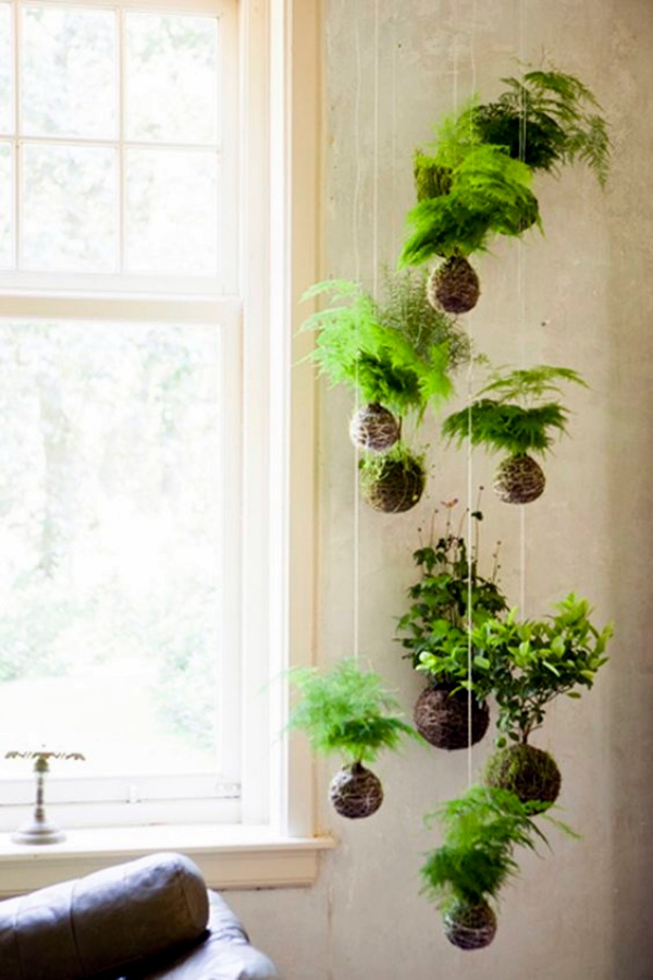 40 So Perfect Wall Hanging Plant Decor Ideas on Hanging Plants Ideas  id=22429