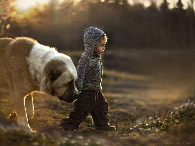 animal-children-photography-elena-shumilova-18