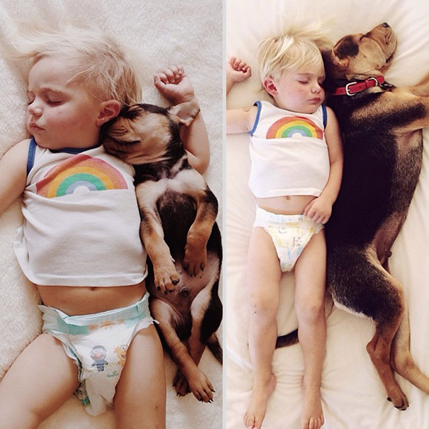 toddler-naps-with-puppy-theo-and-beau-2-1.jpg