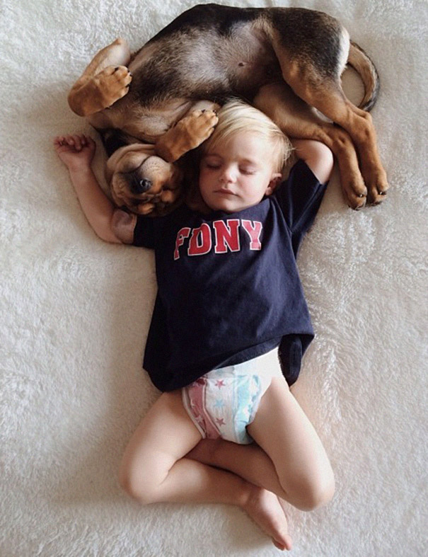 toddler-naps-with-puppy-theo-and-beau-2-10