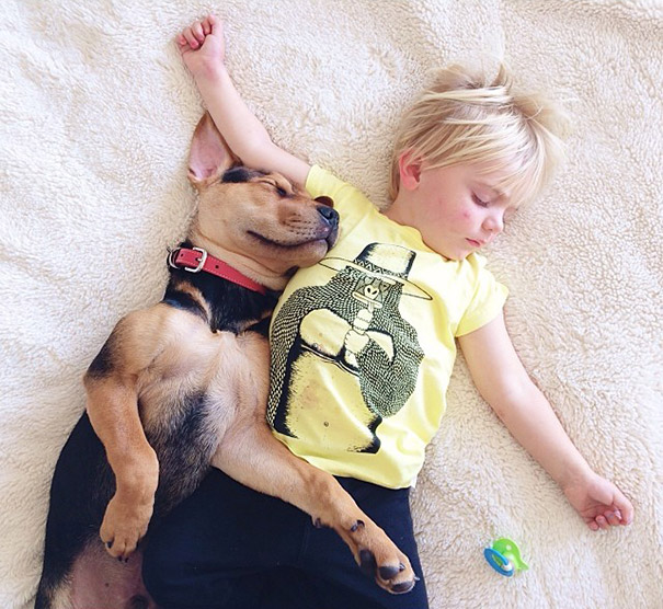 toddler-naps-with-puppy-theo-and-beau-2-3