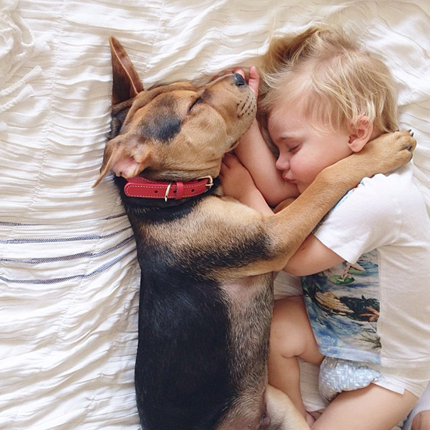 toddler-naps-with-puppy-theo-and-beau-2-8.jpg