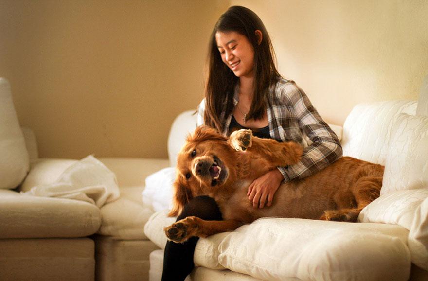 dog-photography-chuppy-golden-retriever-jessica-trinh-1