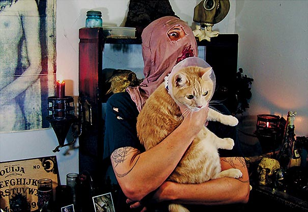 metal-cats-alexandra-crockett-10