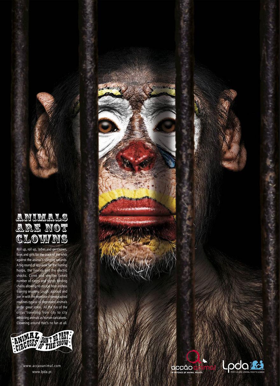 public-social-ads-animals-1