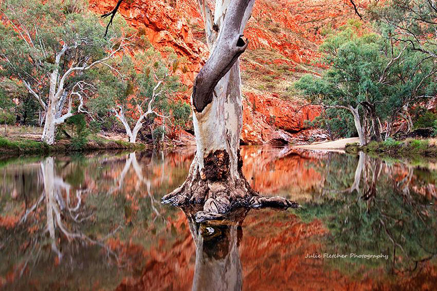 landscape-nature-photography-australia-julie-fletcher-4
